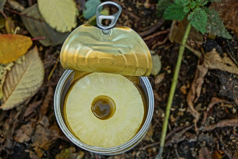 De ingeblikte ananas in een ijzer kan op de straat stock foto