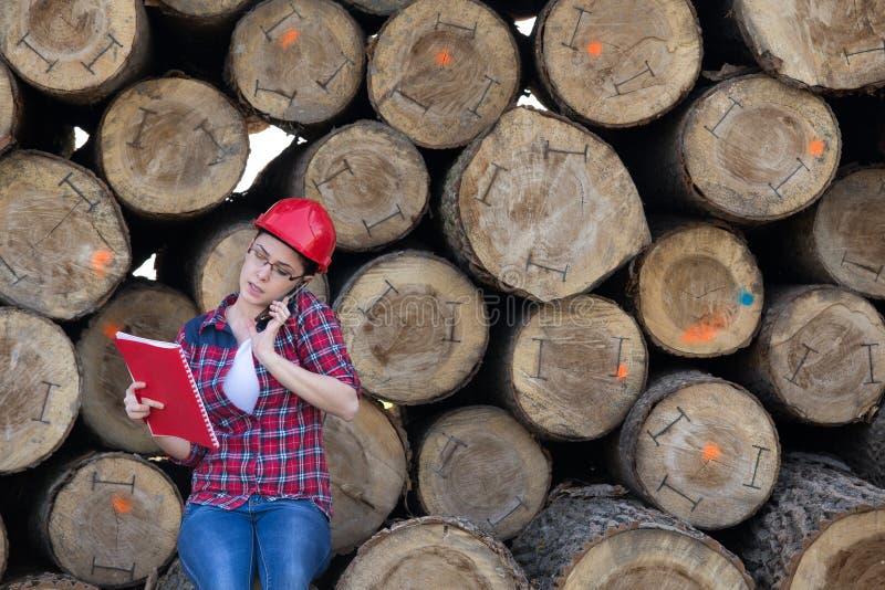 De ingenieur van de vrouwenbosbouw naast boomstammen stock afbeelding
