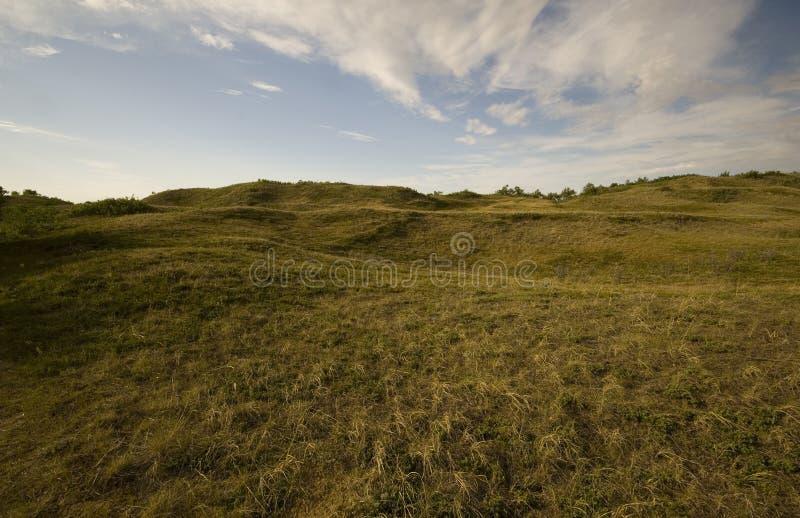 De Inheemse Prairie van Saskatchewan royalty-vrije stock foto's