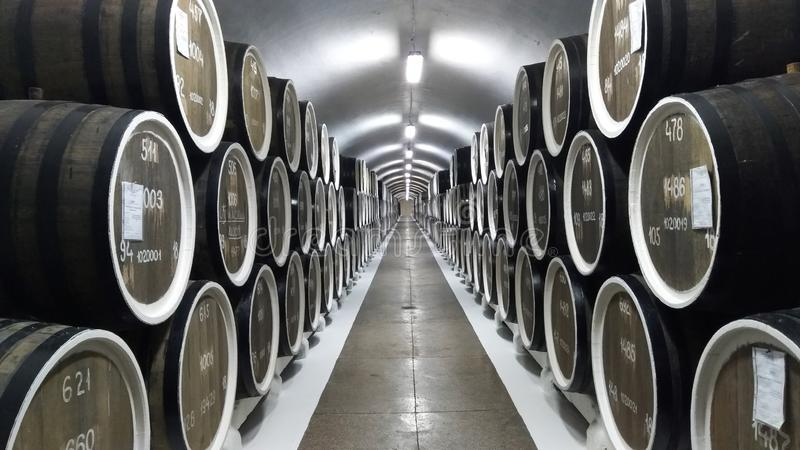 De installatie Massandra van de wijnkelder in Yalta stock fotografie