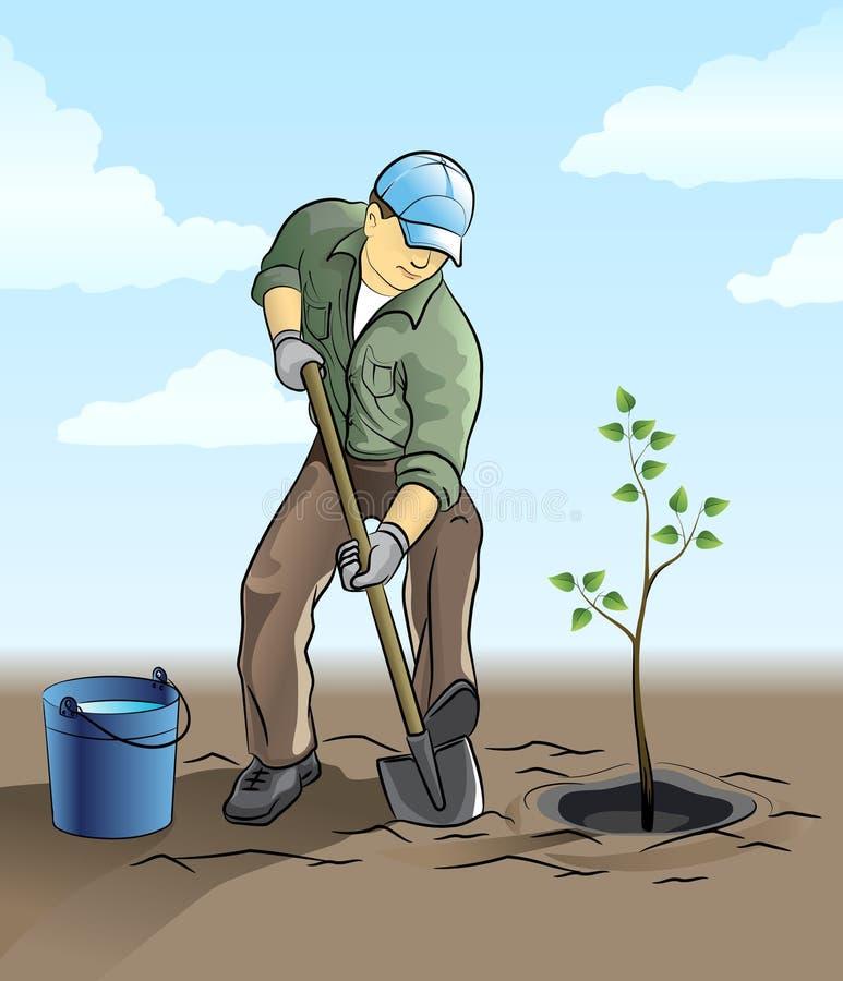 De installatie van de tuinman een boom royalty-vrije illustratie