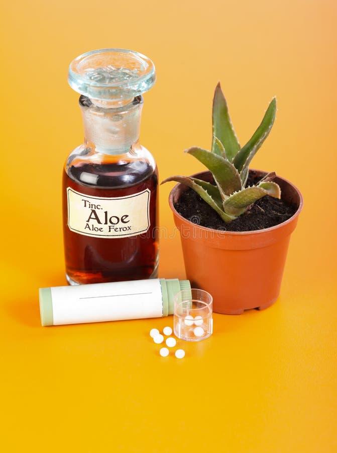 De installatie van Ferox van het aloë, uittreksel en homeopathische pillen stock foto's