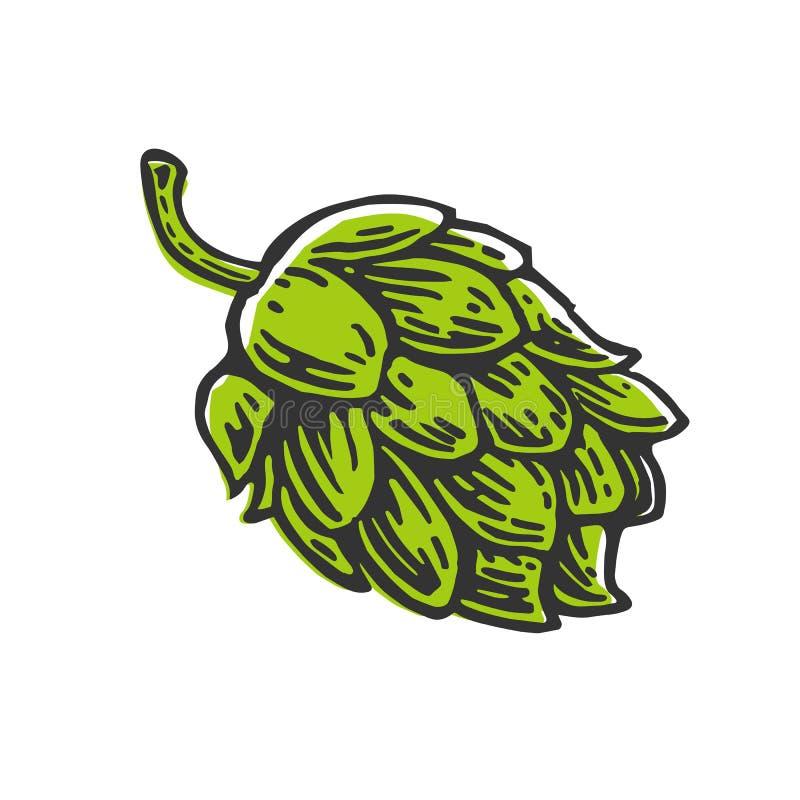 De installatie van het hopkruid die in de brouwerij van bier wordt gebruikt stock illustratie