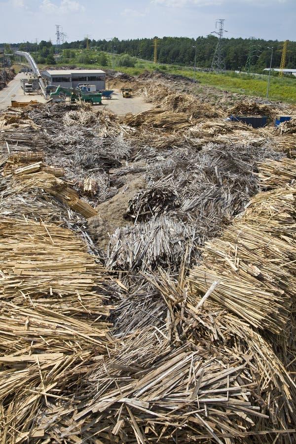 De installatie van het hout en van de biomassa stock foto's