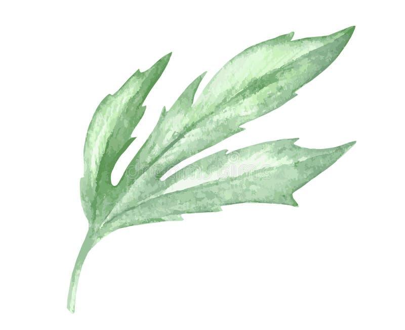 De installatiedecoratie van het waterverf groene blad op witte achtergrond royalty-vrije illustratie
