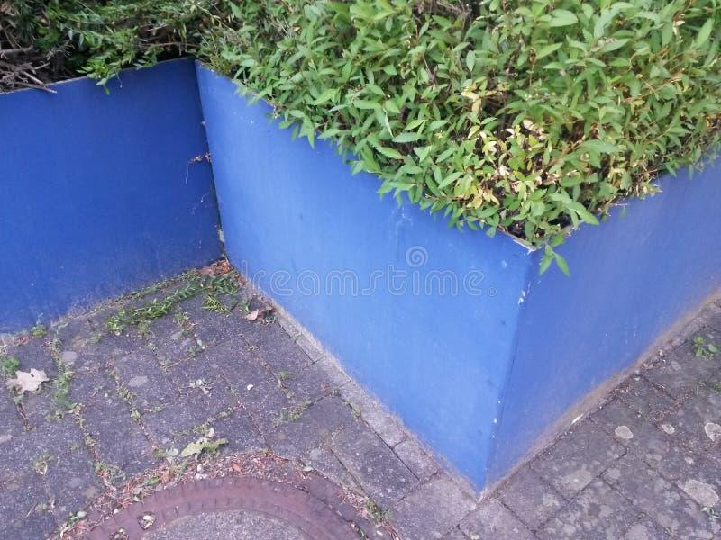 De installatiepot van het tuinontwerp royalty-vrije stock foto's
