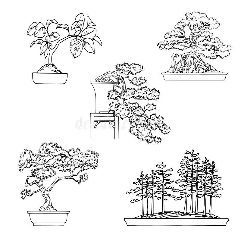 De installaties van de bonsai vector illustratie