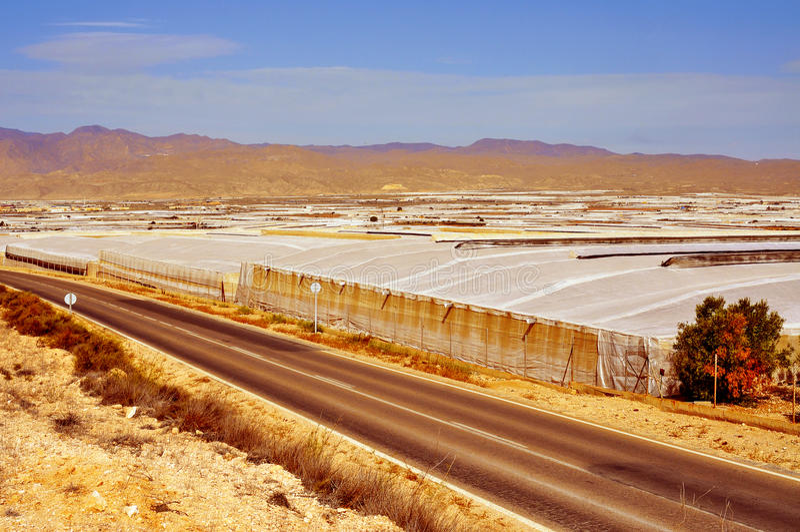 De intensieve landbouw in hoge tunnels in Almeria, Spanje royalty-vrije stock afbeelding