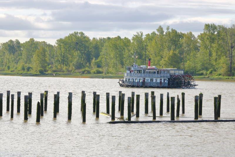 De Inwoner van Paddlewheeler van de Sternwheelstoomboot stock foto's