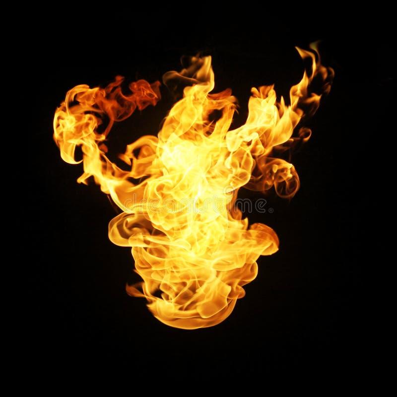 De inzameling van brandvlammen op zwarte achtergrond wordt geïsoleerd die stock foto's