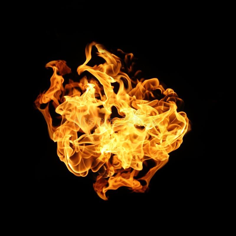 De inzameling van brandvlammen op zwarte achtergrond wordt geïsoleerd die royalty-vrije stock foto's