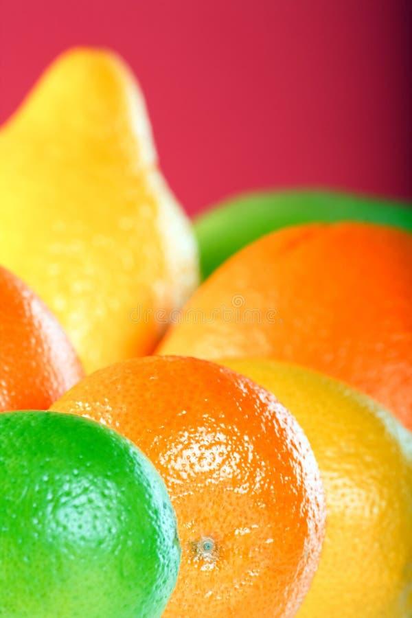 De inzameling van de citrusvrucht royalty-vrije stock fotografie