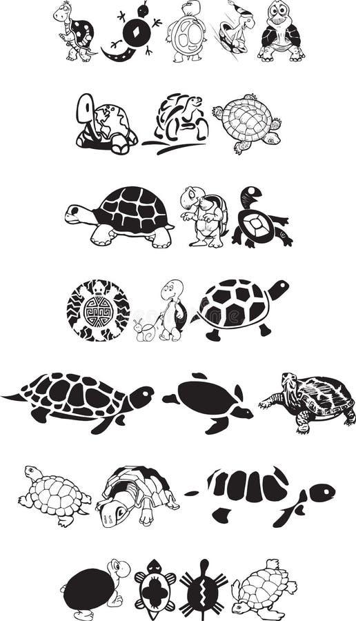 De inzameling van de schildpad royalty-vrije stock afbeelding