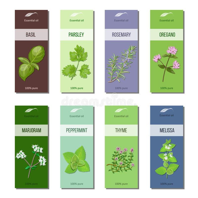 De inzameling van etherische olieetiketten Basilicum, peterselie, rozemarijn, orego, marjolein, pepermunt, melissa, thyme strepen vector illustratie
