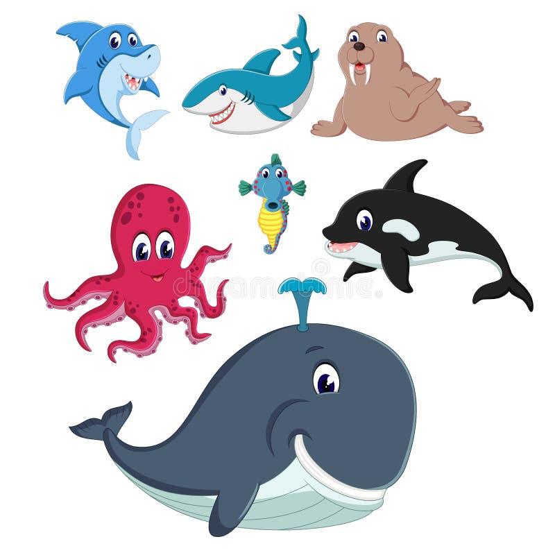 De inzameling van de fauna en de dieren in het overzees met het verschillende soort stock illustratie