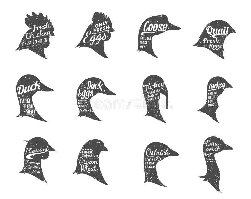 De Inzameling van gevogeltepictogrammen, de Malplaatjes van Slachterijetiketten royalty-vrije illustratie