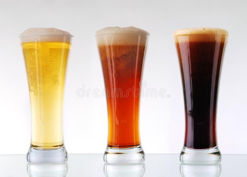 De inzameling van het bier stock fotografie