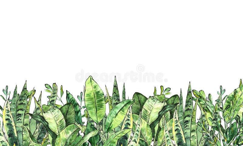 De inzameling van het waterverfgroen Horizontale achtergrond vector illustratie