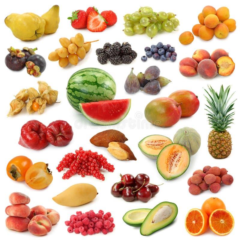 De inzameling van vruchten stock foto