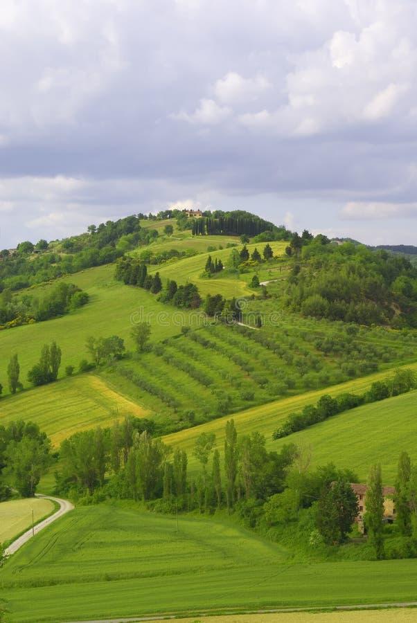 De irrigatie van het gebied, Italië stock foto's