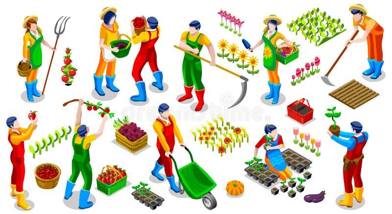 De isometrische van de het Pictograminzameling van LandbouwersPeople 3D Vectorillustratie royalty-vrije illustratie