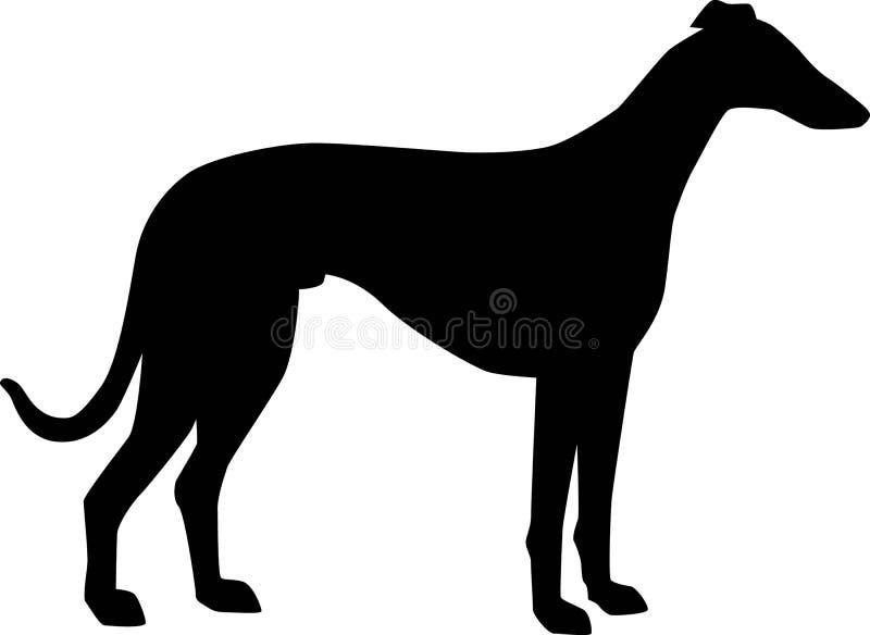 De Italiaanse zwarte van het Windhondsilhouet vector illustratie