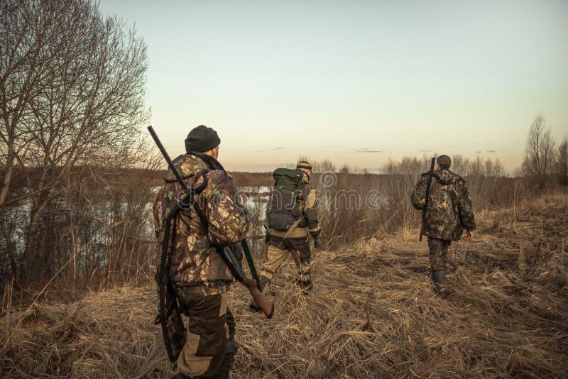 De jachtscène met groep jagers met de jachtmunitie die door landelijk gebied tijdens jachtseizoen bij zonsondergang gaan stock afbeelding
