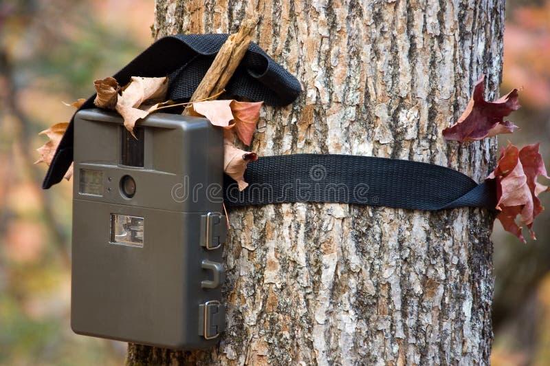 De jager van de camera stock foto's