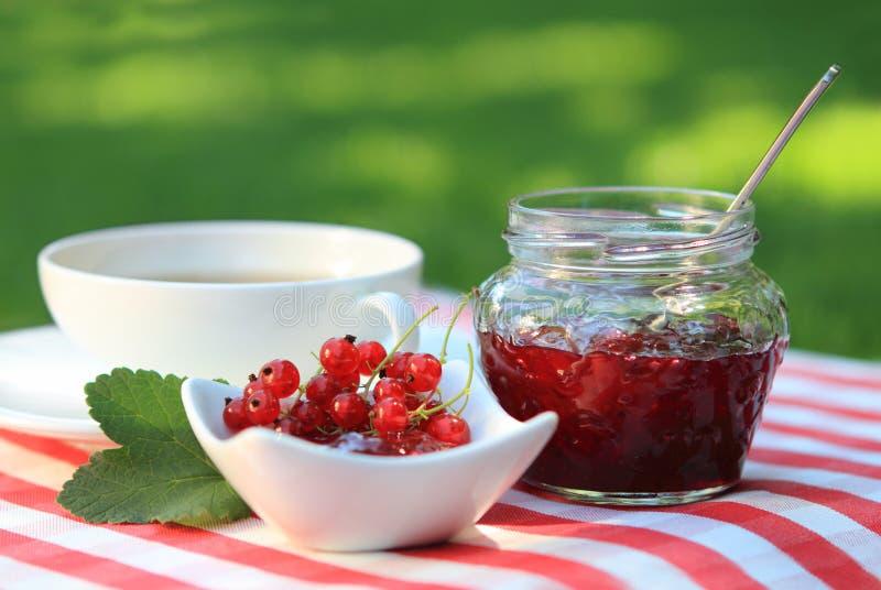 De jam en de thee van de rode aalbes royalty-vrije stock foto's