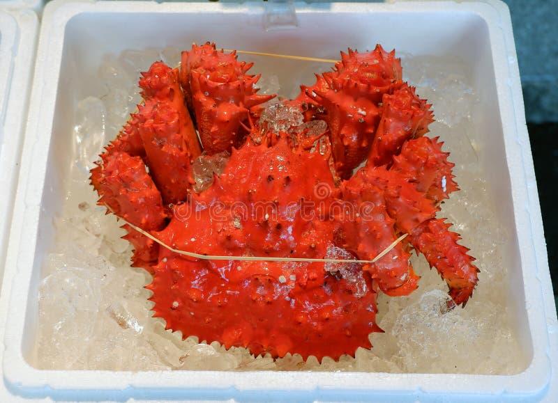 De Japanse heldere rode hanasaki het bloeien bloemkrab of de krab van de konbukelp verkocht bij zeevruchtenmarkt Gevangen Hanasak royalty-vrije stock foto's