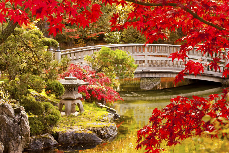 De Japanse Tuin van de herfst royalty-vrije stock afbeeldingen