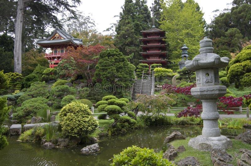 De Japanse Tuin van de Thee stock fotografie