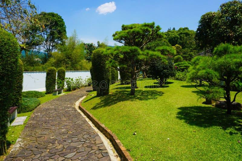 De Japanse tuin van Japan met witte muurstijl en groen gras en boompark - foto royalty-vrije stock afbeeldingen