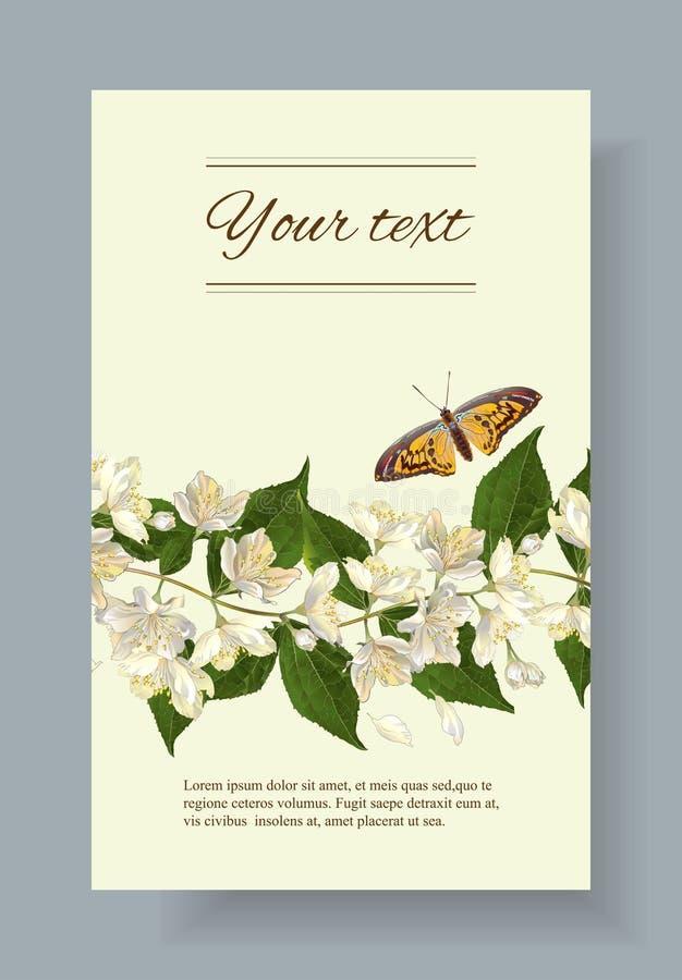 De jasmijn bloeit banner royalty-vrije illustratie
