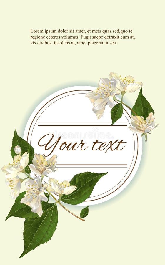 De jasmijn bloeit banner vector illustratie