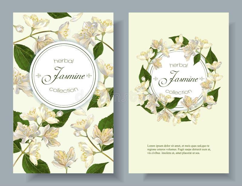 De jasmijn bloeit banner stock illustratie