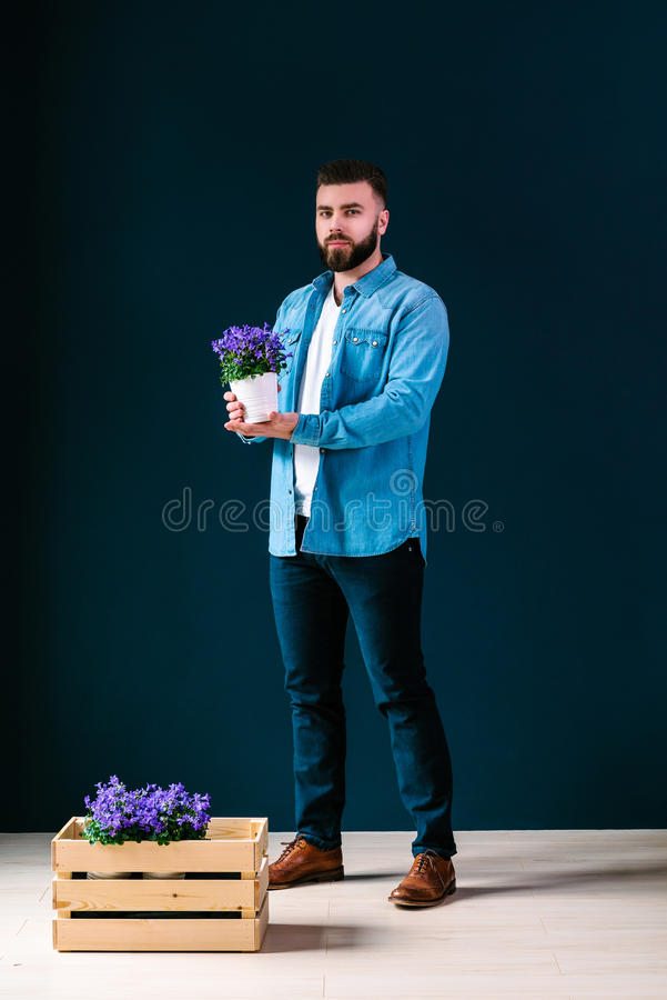 De jonge aantrekkelijke gebaarde hipstermens, gekleed in denimoverhemd en blauwe broek, bevindt zich binnen, houdend pot van bloe stock afbeeldingen