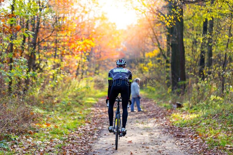 De jonge atletische berijdende fiets van de mensenfietser op de sleep in zonnige bos Achtermening Gezond Levensstijl en Reisconce royalty-vrije stock foto's