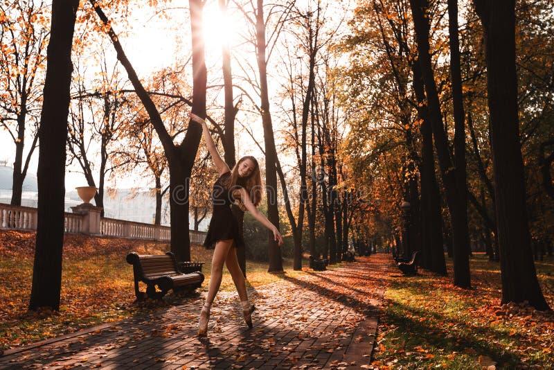 De jonge ballerina danst in het de herfstpark in de ochtend royalty-vrije stock afbeelding
