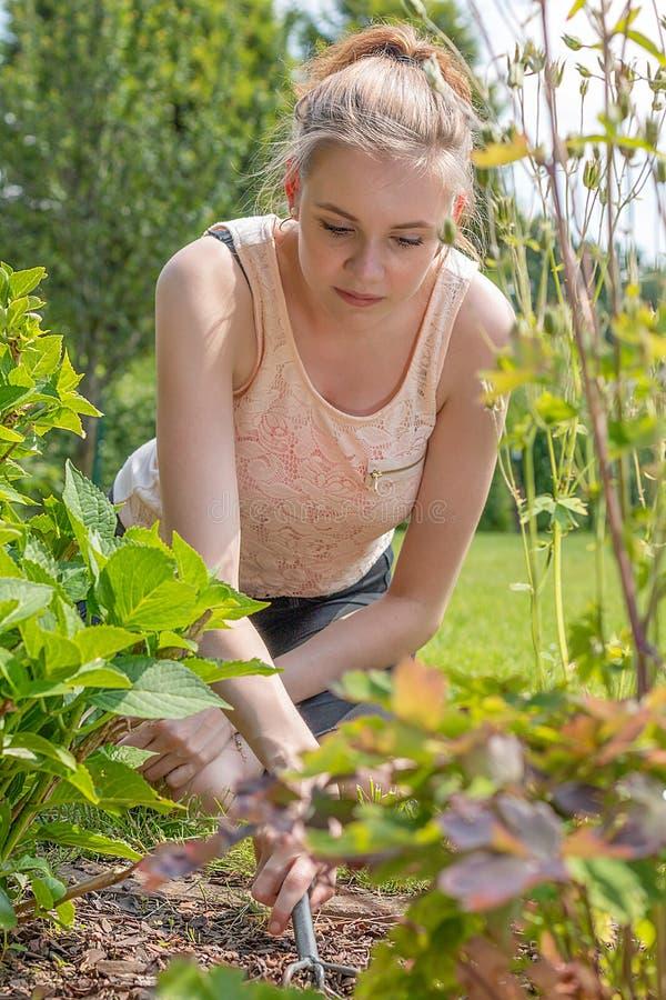De jonge blonde vrouw werkt met een hark in de tuin stock fotografie