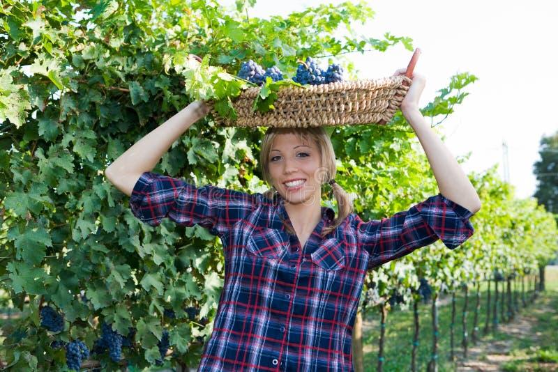 De jonge brengende mand van de boervrouw met druiven stock afbeeldingen