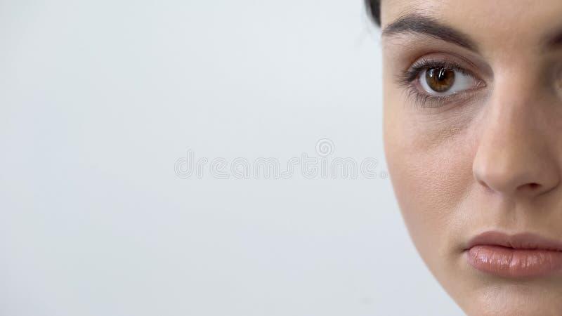De jonge close-up van het damegezicht, kosmetische procedures, make-up en schoonheid, het microblading stock afbeelding