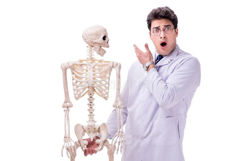 De jonge die arts met skelet op wit wordt geïsoleerd royalty-vrije stock afbeeldingen