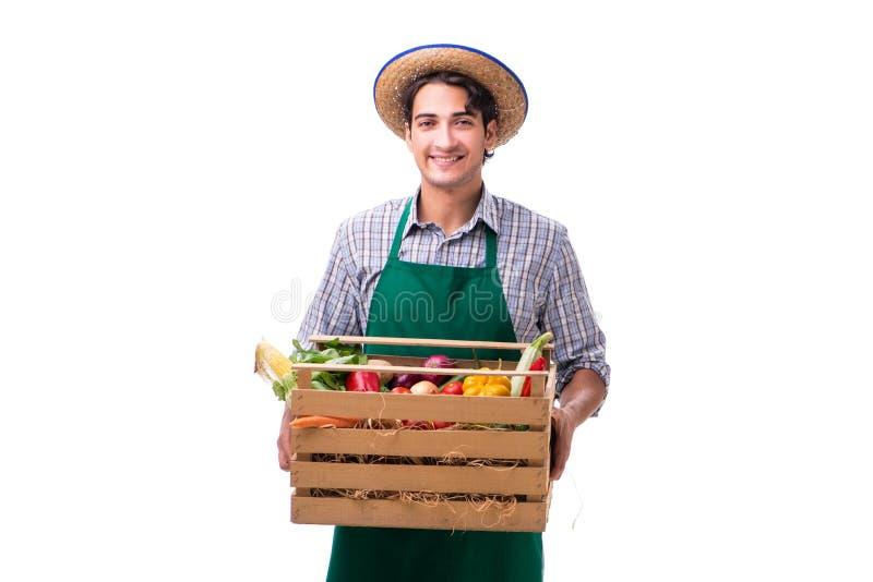 De jonge die landbouwer met vers product op witte achtergrond wordt geïsoleerd stock fotografie