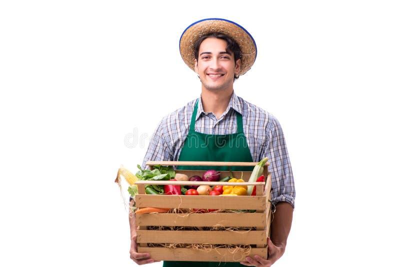 De jonge die landbouwer met vers product op witte achtergrond wordt geïsoleerd stock afbeeldingen