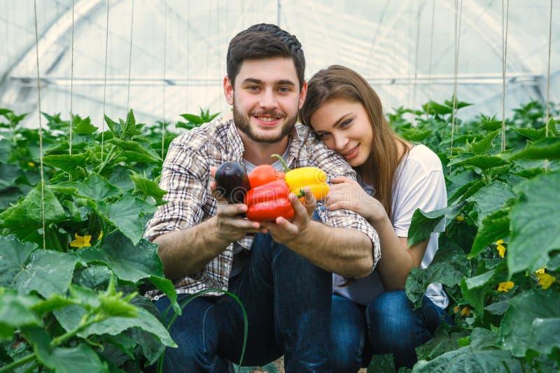 De jonge en mooie landbouwers houden groenten royalty-vrije stock fotografie