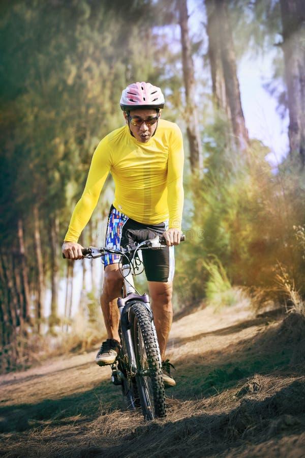 De jonge fiets van de personenvervoerberg mtb in het gebruik van het wildernisspoor voor sport stock foto's