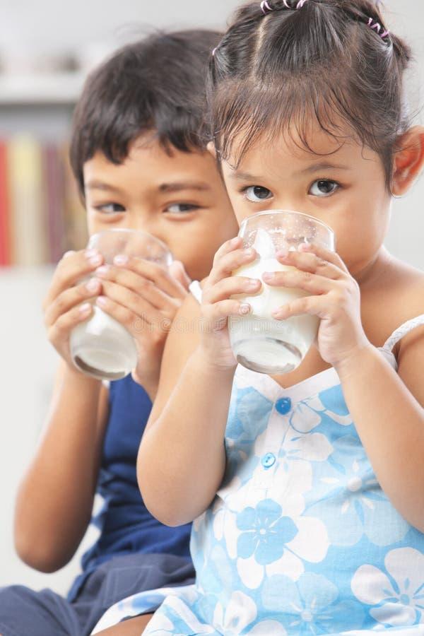 De jonge geitjes genieten het drinken van melk stock foto's