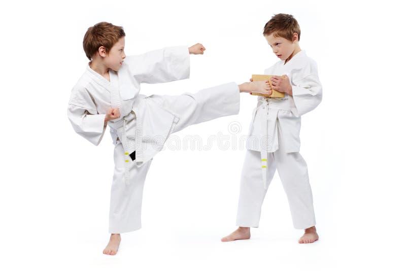 De jonge geitjes van de karate stock afbeeldingen