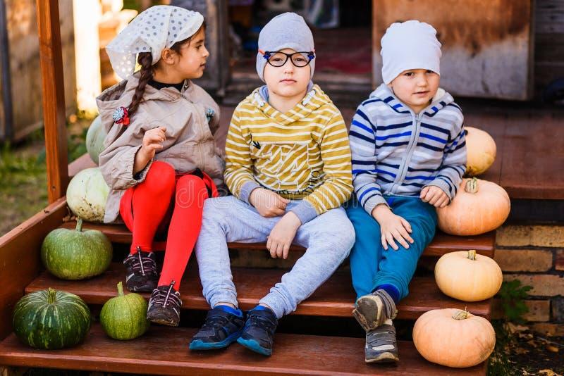 De jonge geitjeskleuters zitten op een oude die portiek met pompoenen op Halloween wordt verfraaid royalty-vrije stock afbeeldingen